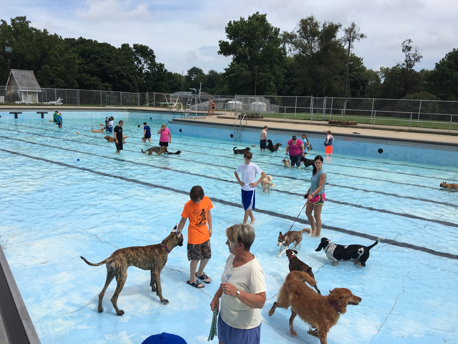 City Of Crawfordsville Indiana Doggie Pool Party
